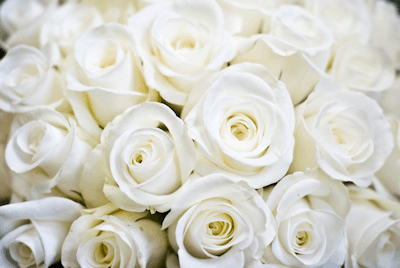 The Bespoke Flower Co